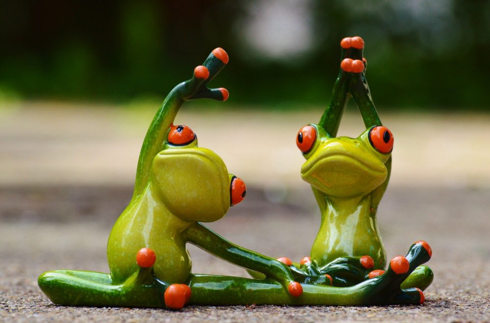 Deko Froschfiguren in Fitnessposen
